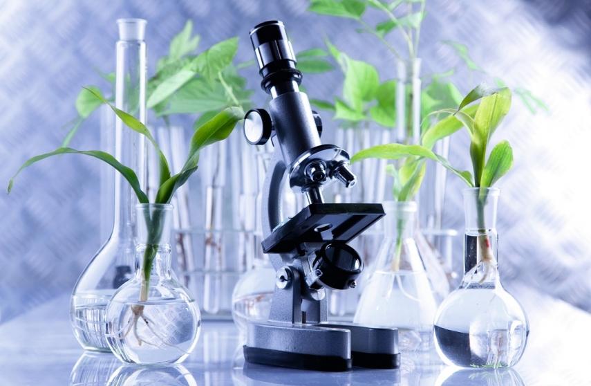 Plant health laboratories